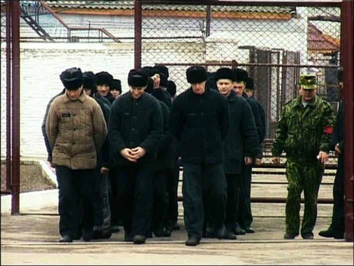 Photo of Госдума объявила амнистию  Госдума объявила амнистию v 002