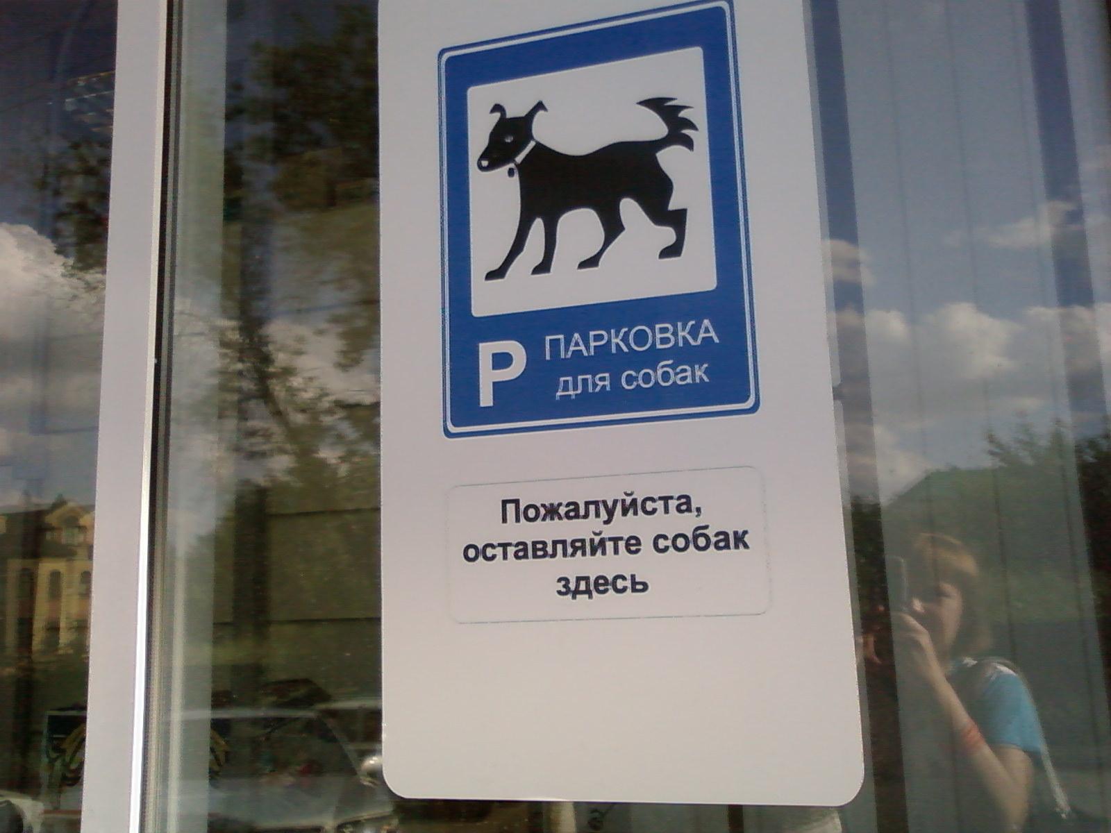 Photo of Появятся парковки для собак Появятся парковки для собак Появятся парковки для собак 315304942