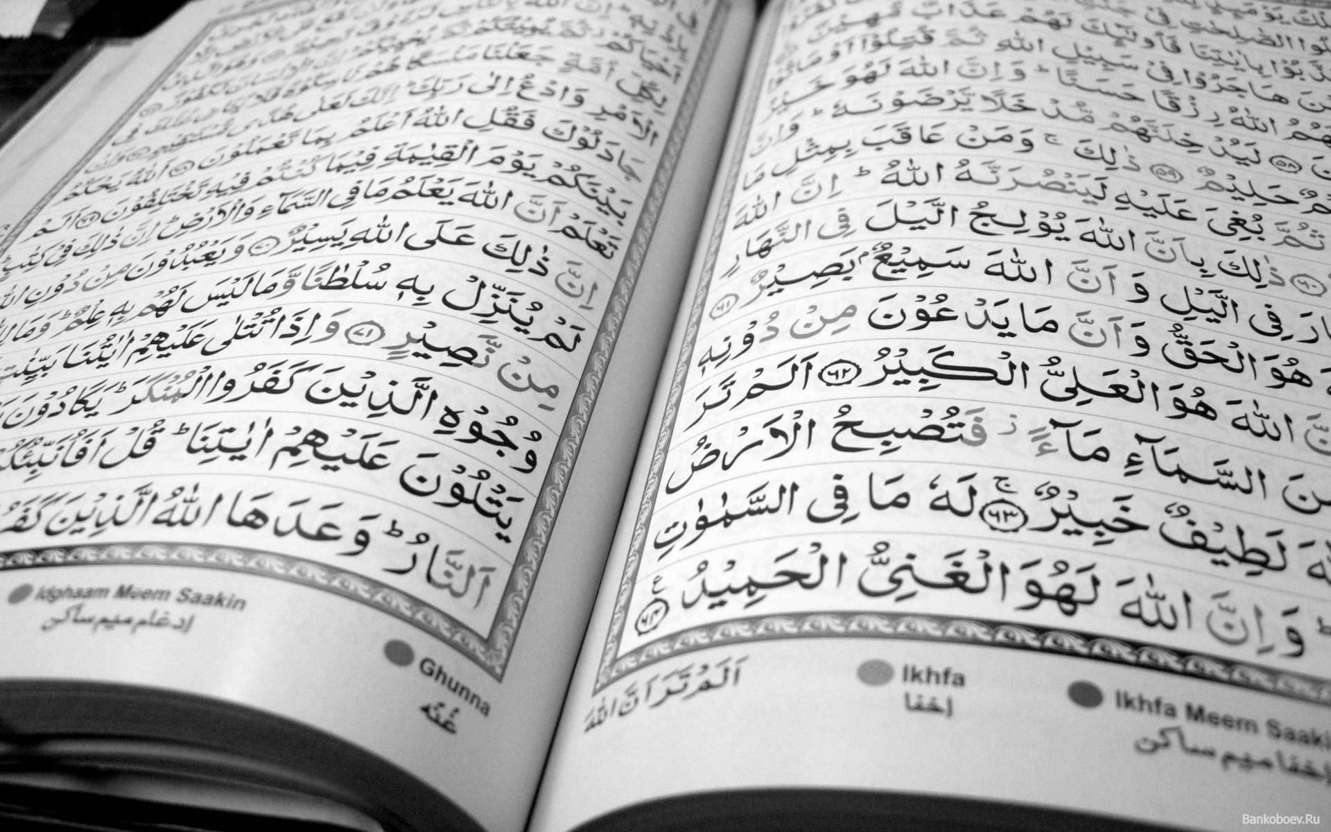 Photo of Обнаружен старейший экземпляр Корана Обнаружен старейший экземпляр Корана Обнаружен старейший экземпляр Корана Bankoboev