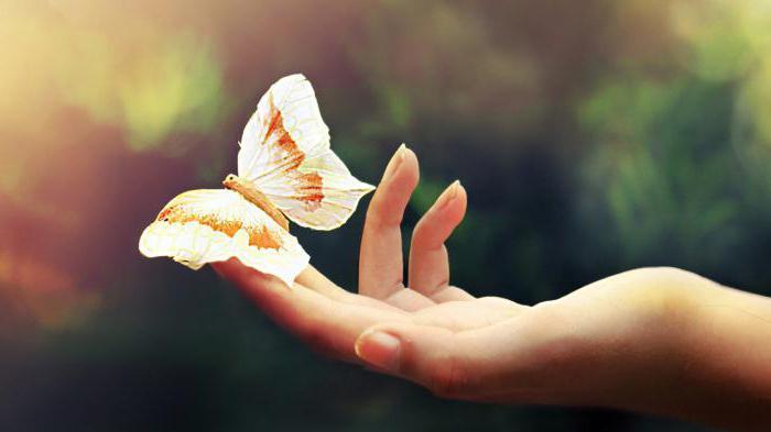 Photo of Каково быть «бабочкой»? буллёзный эпидермолиз Каково быть «бабочкой»?                              1