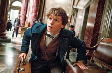 Фантастические твари, герои Гарри Поттера