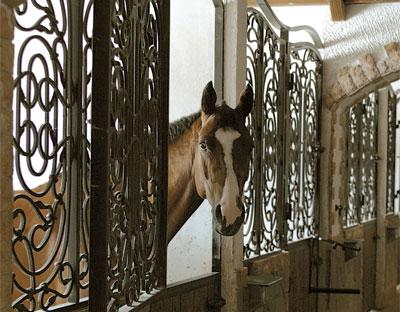 Конные клубы в москве или подмосковье ночные клубы москва среда
