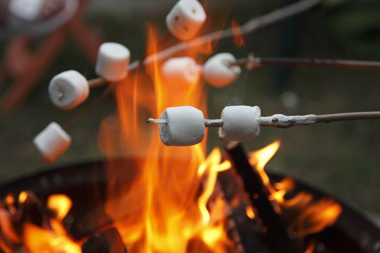 Пожарить зефир на костре note: 100 вещей, которые нужно сделать летом Note: 100 вещей, которые нужно сделать летом y shutterstock 122697214
