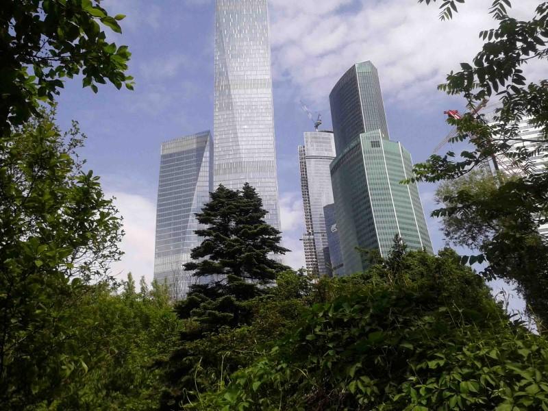 Photo of Заповедник лечебных растений появится в Москве ботанический сад первого мгму им сеченова Заповедник лечебных растений появится в Москве 3010