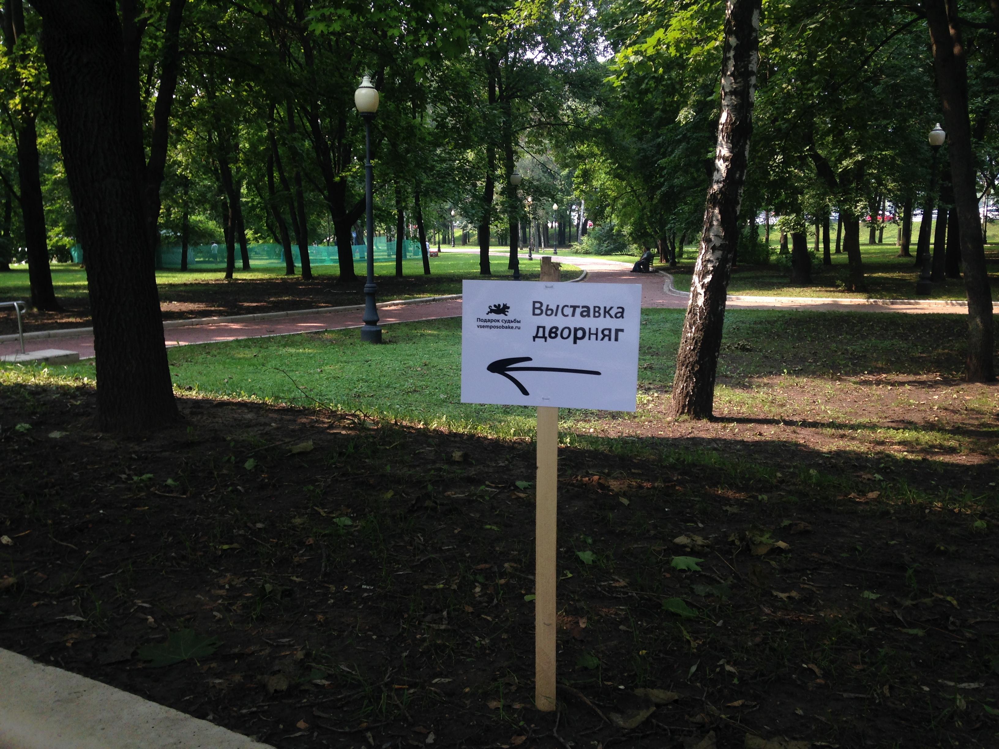 #всемпособаке Самая пушистая выставка Москвы Самая пушистая выставка Москвы IMG 5873