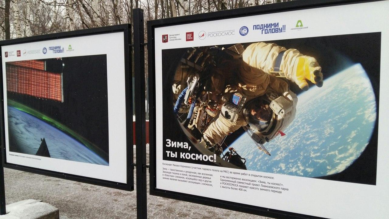 Photo of Ассоциации с зимой. Выставки в парках выставки в парках москвы Ассоциации с зимой. Выставки в парках