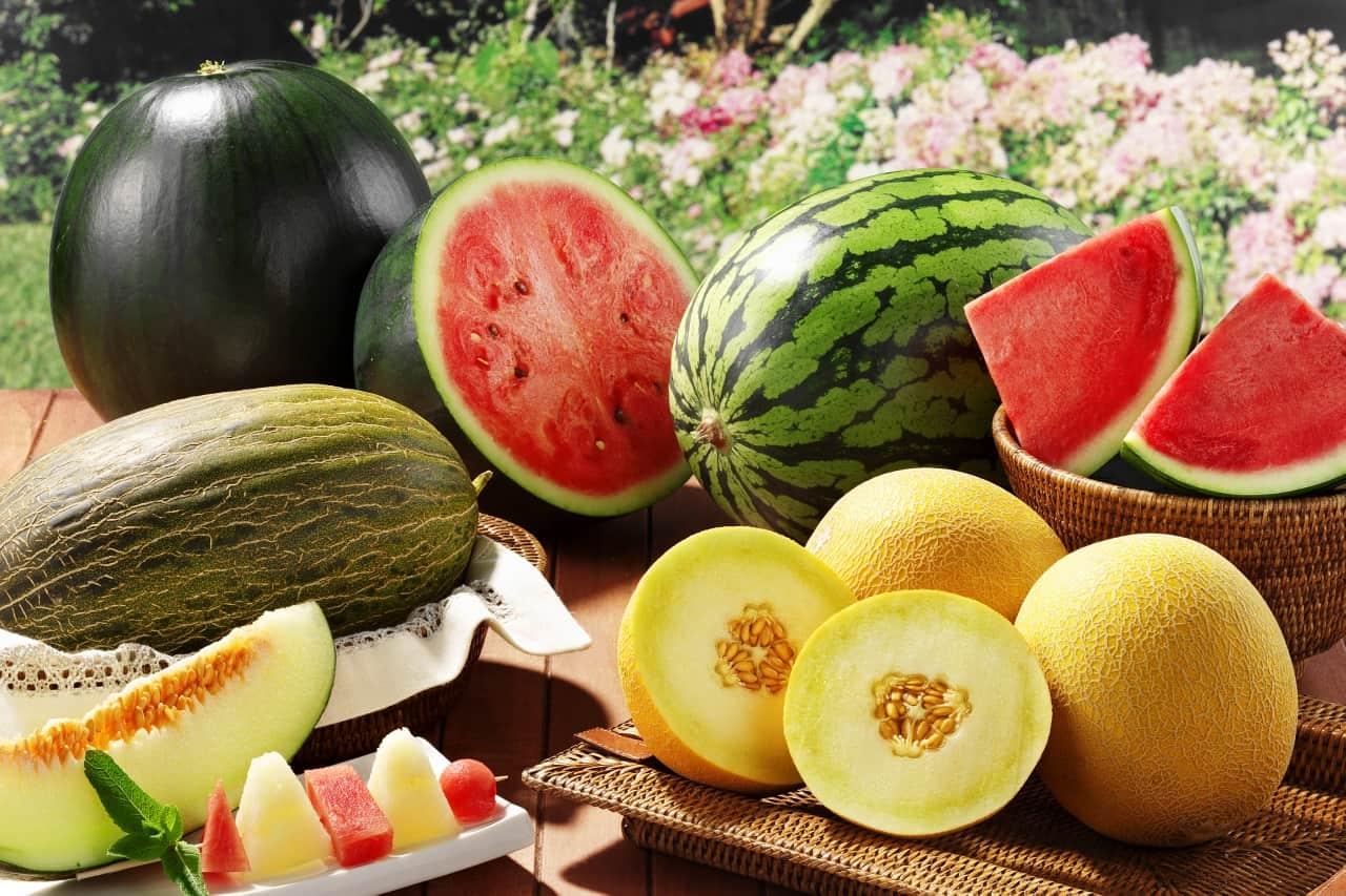 Photo of 1 августа – официальный старт продаж арбузов и дынь  1 августа – официальный старт продаж арбузов и дынь 1 7