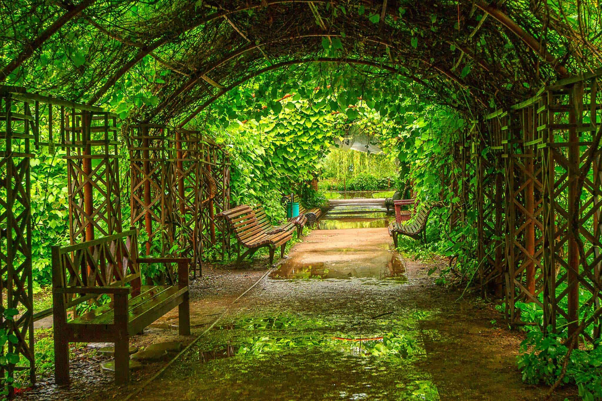 Photo of Сенсорный сад в «Аптекарском огороде»  Сенсорный сад в «Аптекарском огороде» 1 10