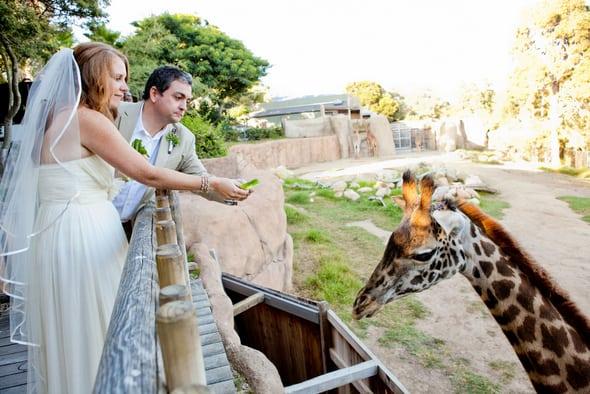 Photo of Регистрация брака в Московском зоопарке  Регистрация брака в Московском зоопарке 1 5