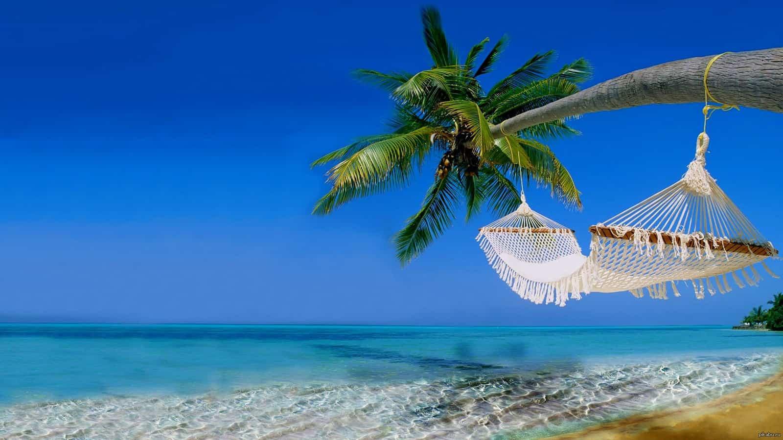 Photo of Где отдохнуть этим летом Где отдохнуть этим летом Где отдохнуть этим летом 1427016935 438550143