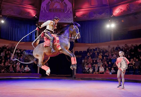 Фестиваль циркового искусства «Идол» Фестиваль циркового искусства «Идол» 3 17