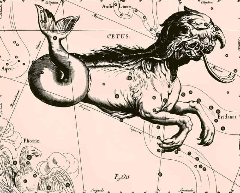 Зоология созвездий 2 6