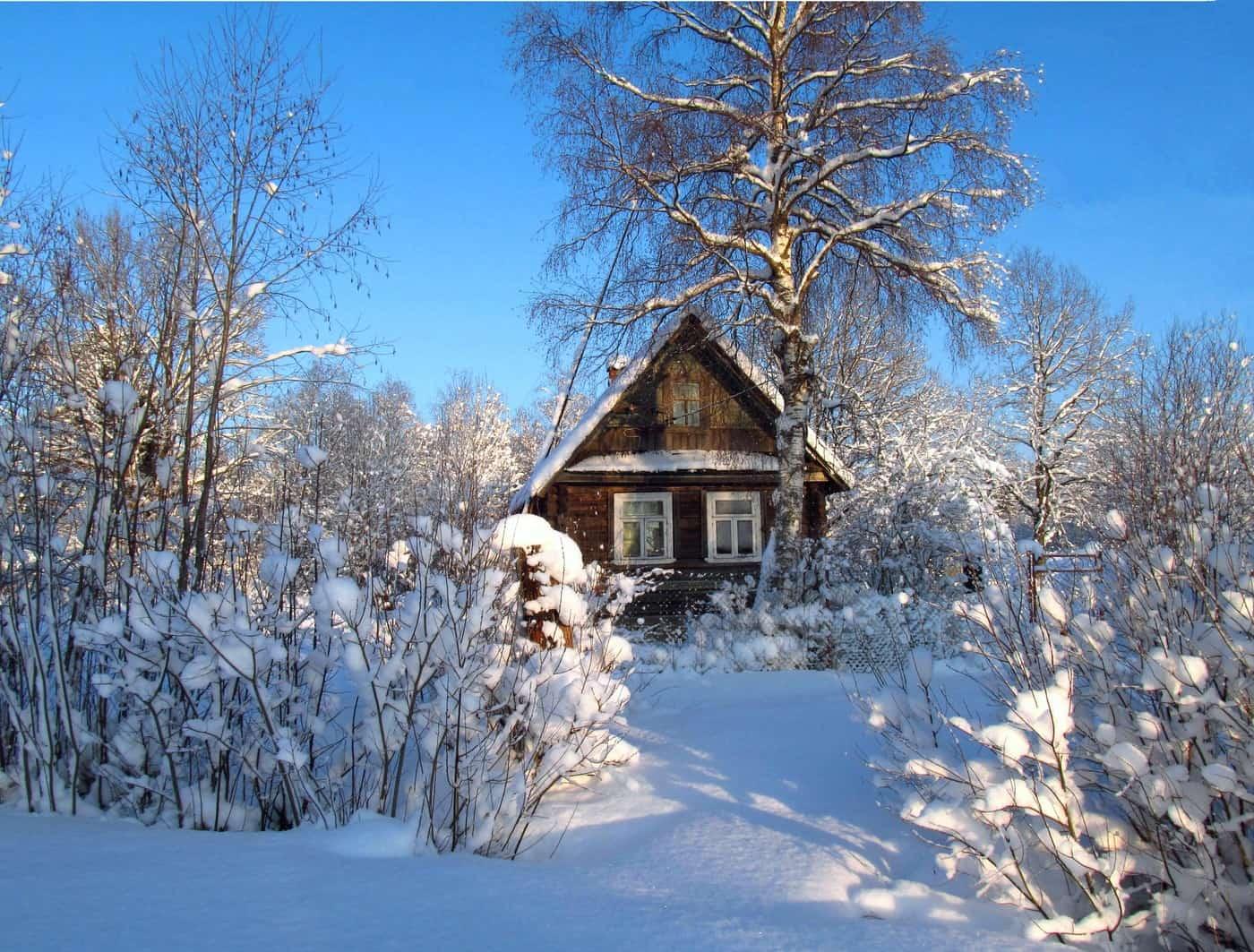 Выставка «Русская зима» 4 1
