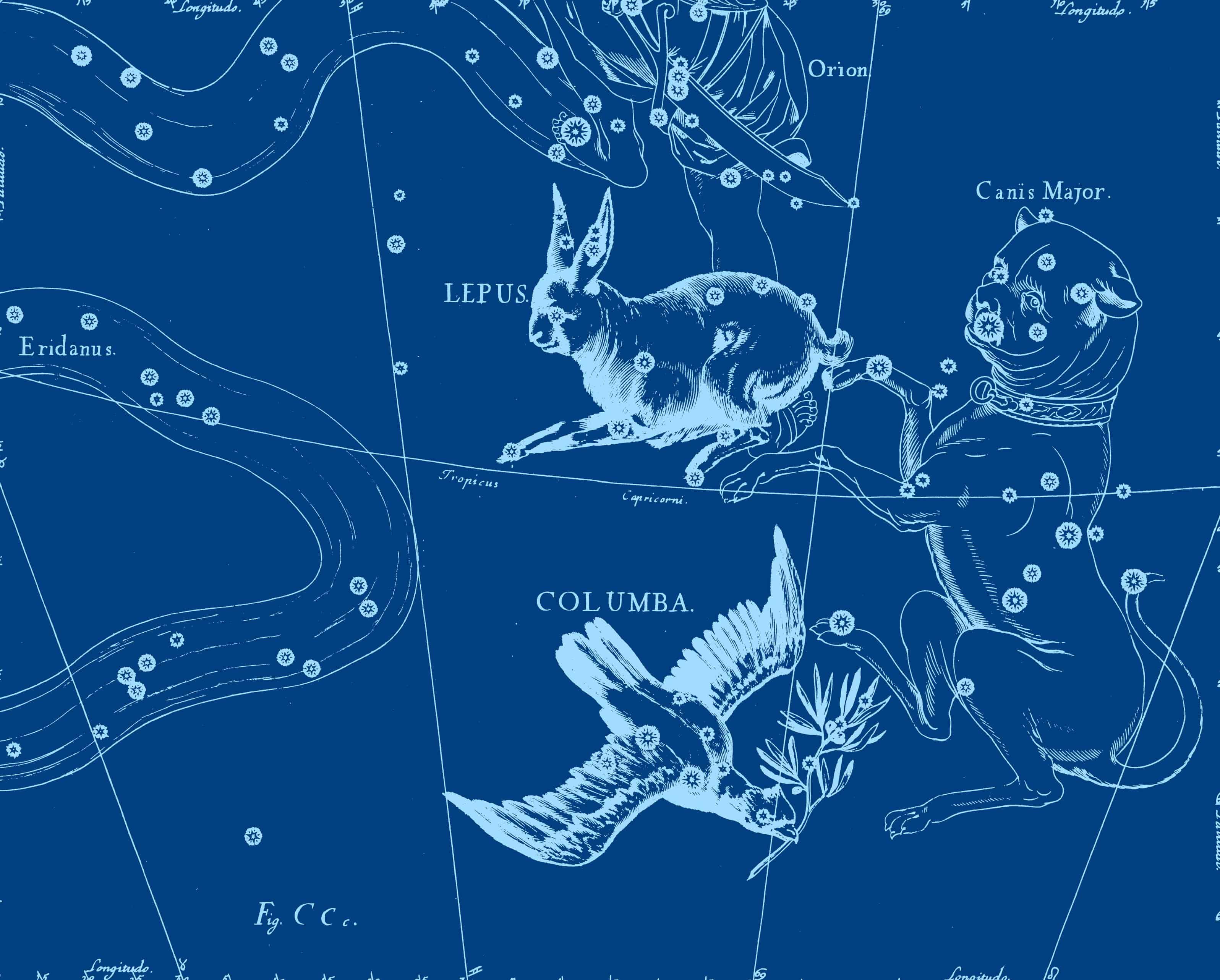Зоология созвездий 5 6