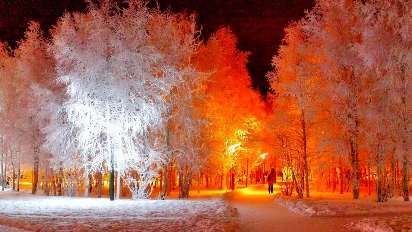 Photo of В Москве появятся деревья-киборги В Москве появятся деревья-киборги В Москве появятся деревья-киборги 1 9