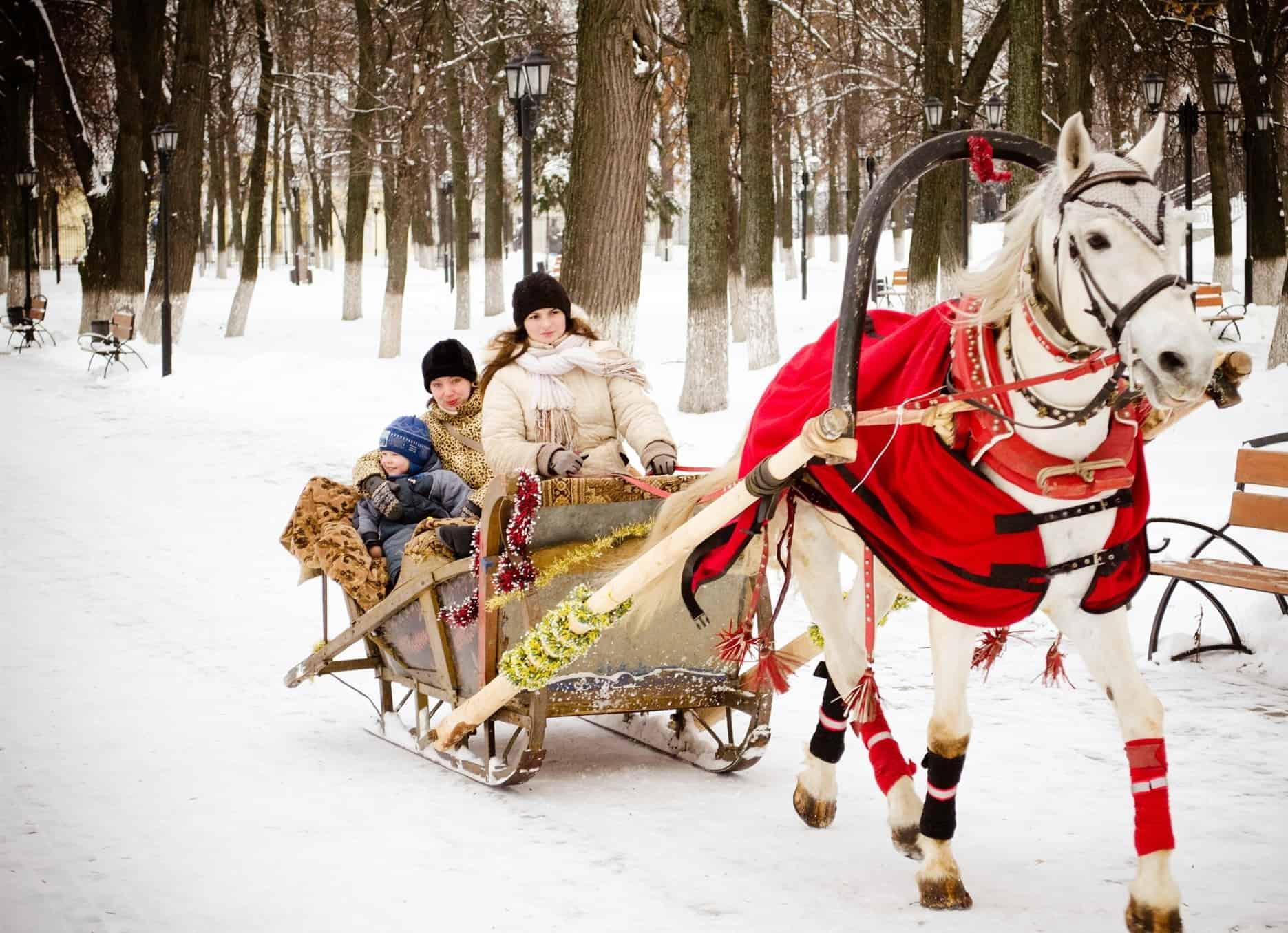 Катание на упряжках в московских парках Катание на упряжках в московских парках 5 9