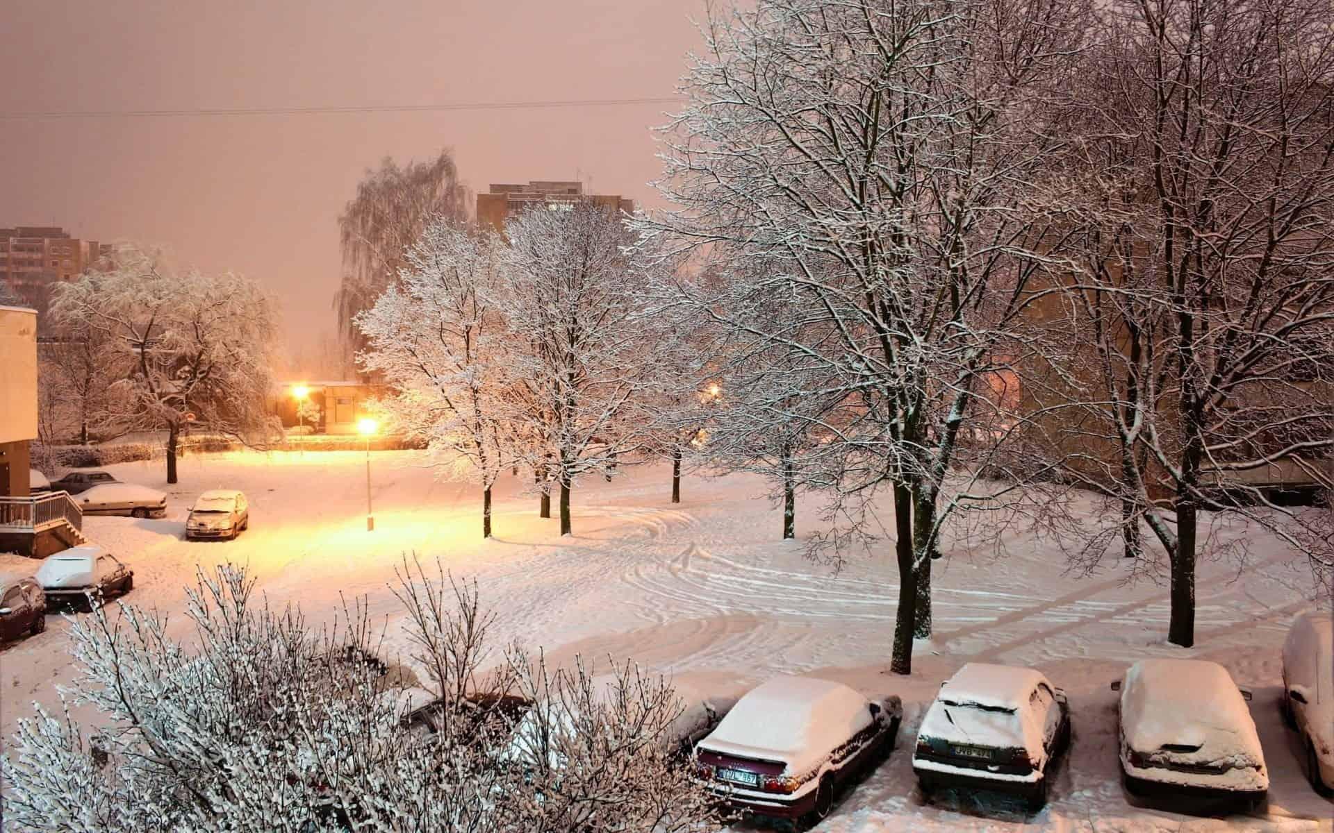 картинки снежность в городе этой этнической группы