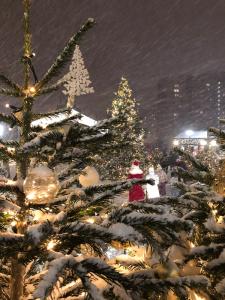 Новогоднее настроение не покинет больше Вас Новогоднее настроение не покинет больше Вас IMG 7774 225x300
