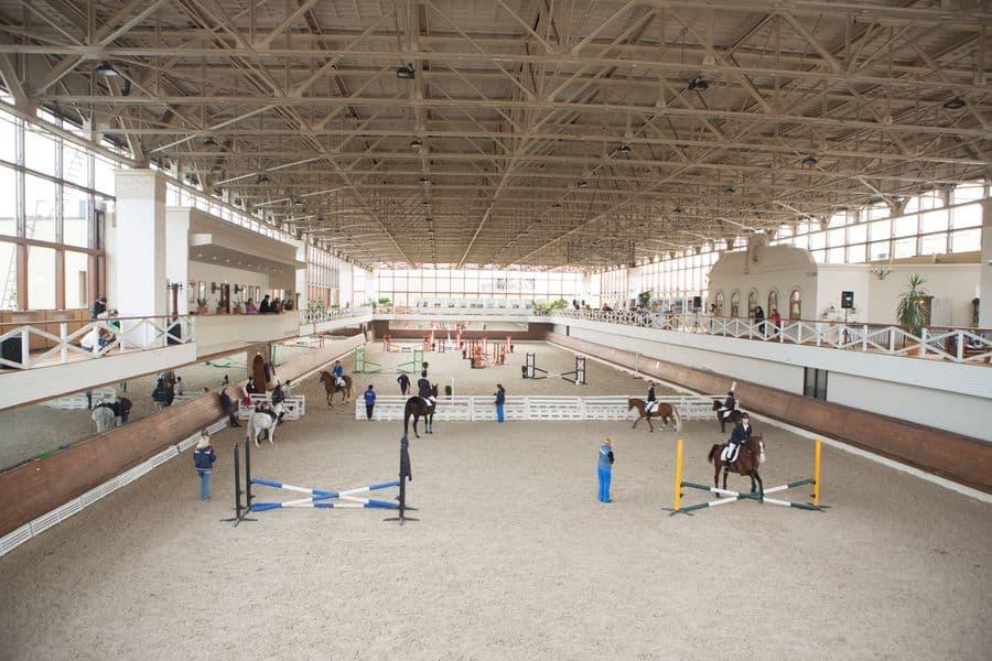 где покататься на лошадях в Москве где покататься на лошадях в Москве Где покататься на лошадях в Москве? 8