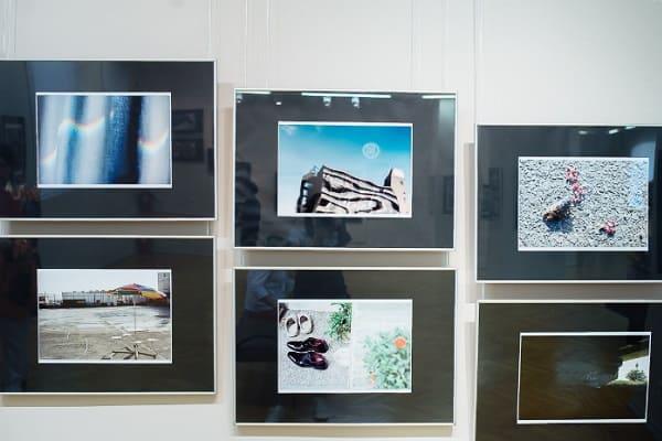 выставка в дарвиновском музее Токийские истории 5 3