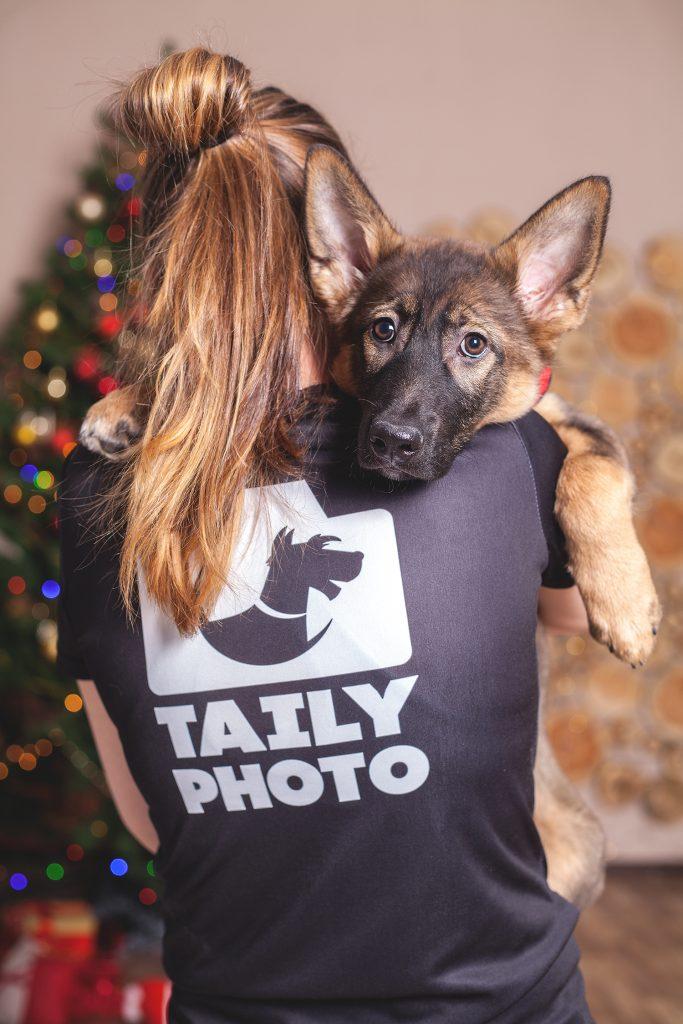 Фотография помогает собакам найти дом IMG 59422 683x1024