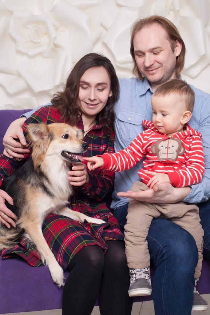 Фотография помогает собакам найти дом IMG 90321 683x1024