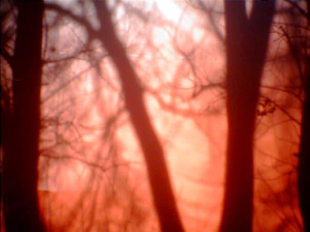 Фото 0,3 мгп камера Вторая жизнь первобытной цифры Вторая жизнь первобытной цифры IMG 5420