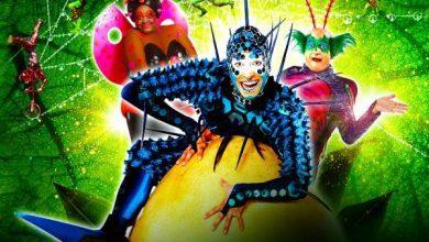 Photo of Шоу OVO от Cirque du Soleil в ДС «Лужники» Шоу ovo от cirque du soleil в ДС «Лужники» Шоу OVO от Cirque du Soleil в ДС «Лужники» ovo4 390x220