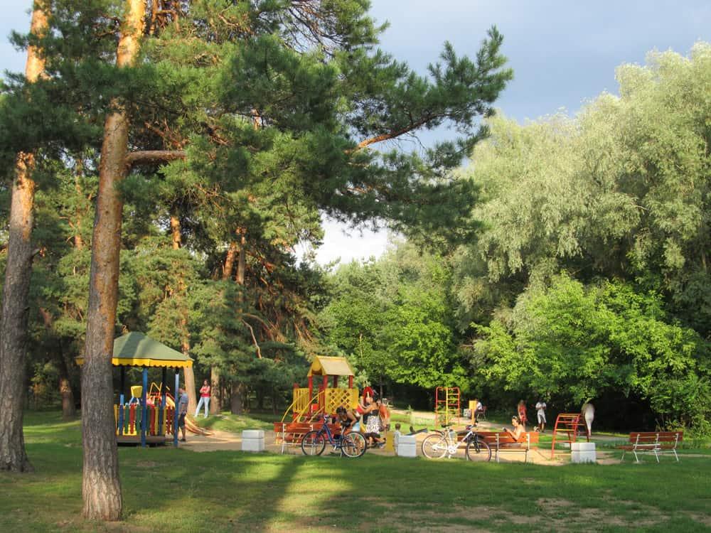 Парк «Серебряный Бор» в Москве Серебряный Бор Парк «Серебряный Бор» в Москве IMG 8736