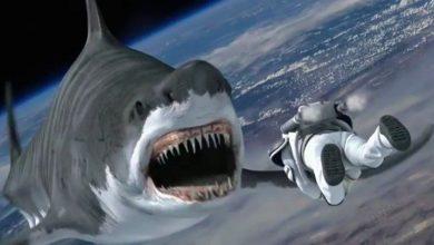 Photo of Глубокое зубастое море: фильмы про подводных чудовищ Глубокое зубастое море: фильмы про подводных чудовищ Глубокое зубастое море: фильмы про подводных чудовищ                               390x220