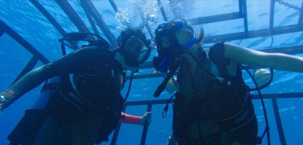 Глубокое зубастое море: фильмы про подводных чудовищ Глубокое зубастое море: фильмы про подводных чудовищ                         1024x493