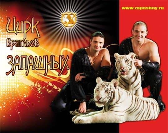 Цирк братьев Запашных  цирк Цирковое искусство в Москве сегодня cirk zap