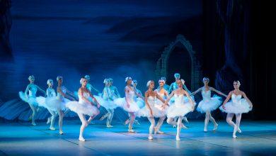 Photo of Балет в Москве: на что обратить внимание и как сделать выбор? балет Балет в Москве: на что обратить внимание и как сделать выбор? pexels photo 358024 390x220