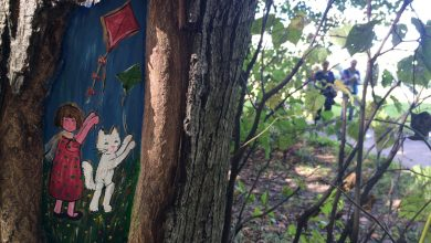 Photo of ПаркАрт: рисунки на деревьях ПаркАрт ПаркАрт: рисунки на деревьях W9PJU9EoUfE 390x220