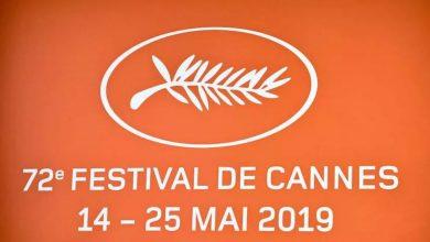 Photo of Каннский фестиваль 2019 Каннский фестиваль 2019 Каннский фестиваль 2019 wqeqwe 390x220