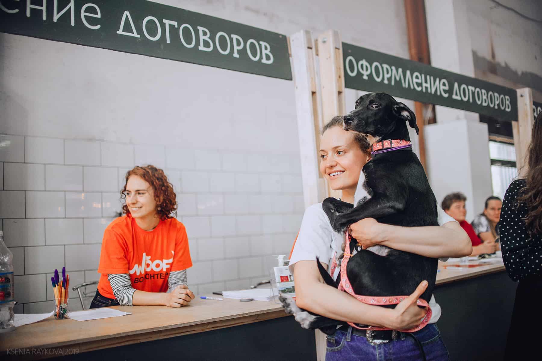 woof fest О кошках, собаках, приютах и благотворительности. Интервью с организаторами фестиваля Woof Fest DXP6ulQehzM