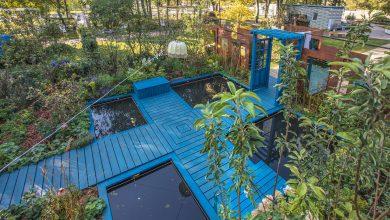 Photo of ВДНХ украсят дизайнерские сады дизайнерские сады ВДНХ украсят дизайнерские сады