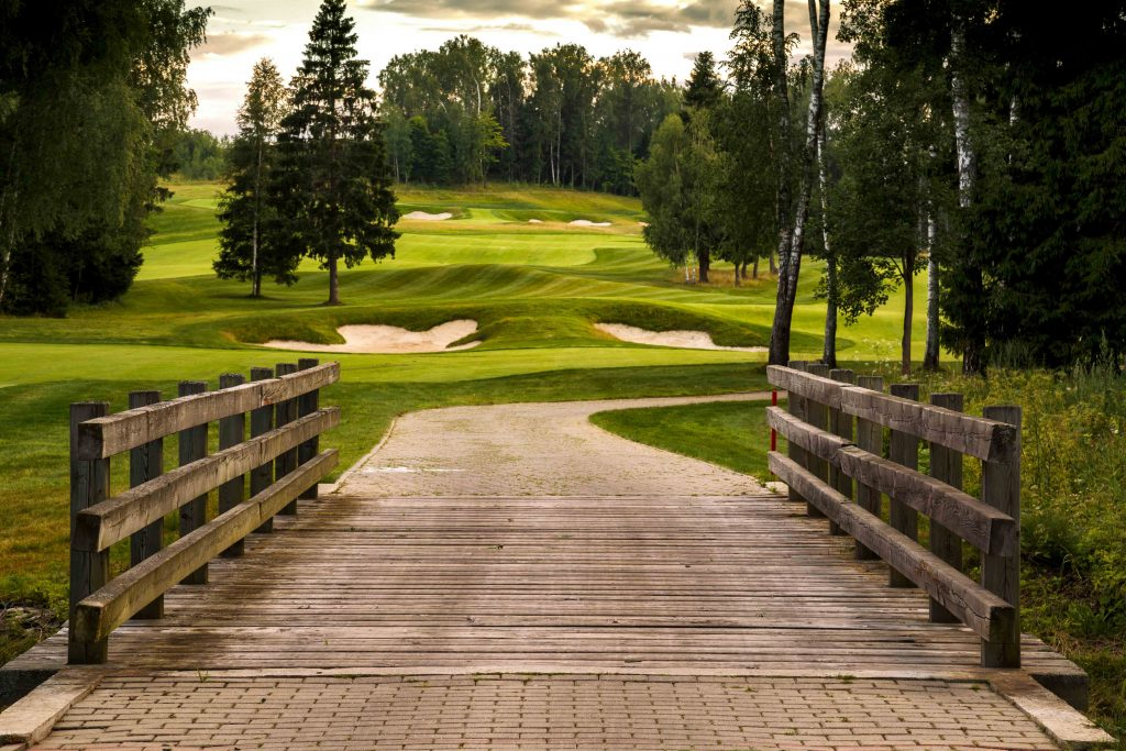 гольф в Подмосковье гольф Как научиться играть в гольф?          F3A7205 1024x683