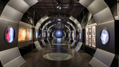 Photo of Новая Третьяковка отправляет в «Свободный полёт» выставка Свободный полёт Новая Третьяковка отправляет в «Свободный полёт» 2          390x220