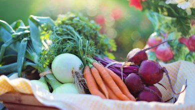Photo of Пять полезных устройств от Polaris для здорового питания Пять полезных устройств для здорового питания Пять полезных устройств от Polaris для здорового питания organic food 390x220
