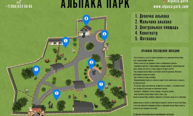 Photo of Альпака Парк откроется в семейном парке Сказка Альпака Парк Альпака Парк откроется в семейном парке Сказка                           2019 11 02    19