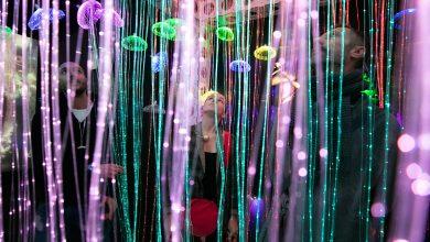 Photo of Mystic Universe – путешествуем по вселенной на иммерсивной выставке mystic universe Mystic Universe – путешествуем по вселенной на иммерсивной выставке Vystavka Mystic Universe 1 min 390x220
